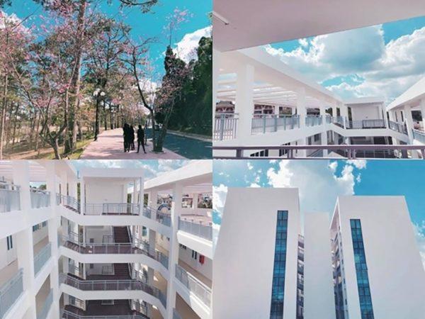 Đại học Đà Lạt – Ngôi trường vạn góc sống ảo cho sinh viên