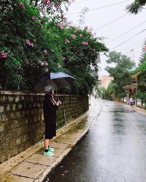Những cơn mưa tháng 7 Đà Lạt vội đến cũng vội đi