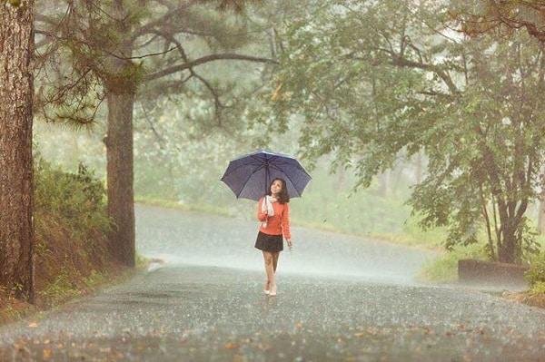 Những cơn mưa chợt đến cũng chợt đi