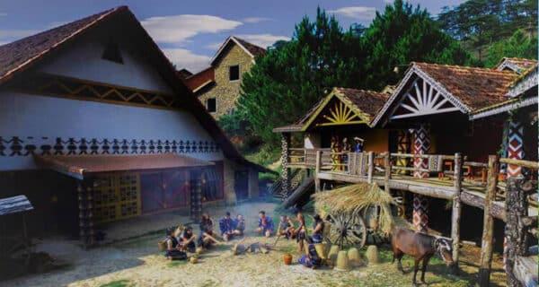 Những ngôi nhà gỗ giữa rừng Thông
