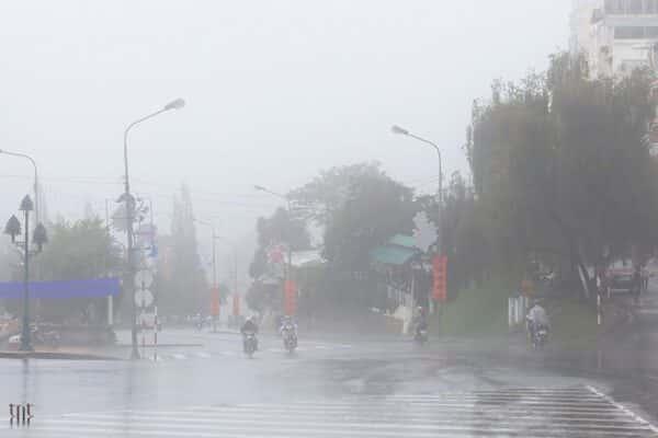 Những ngày thành phố Đà Lạt buồn mênh mang