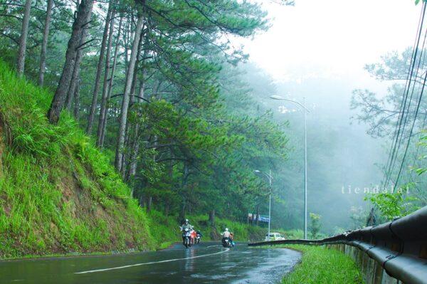 Đà Lạt mùa mưa - Ảnh 1