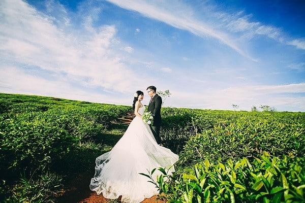 Đồi Chè Cầu Đất - Địa điểm chụp ảnh cưới đẹp tại Đà Lạt