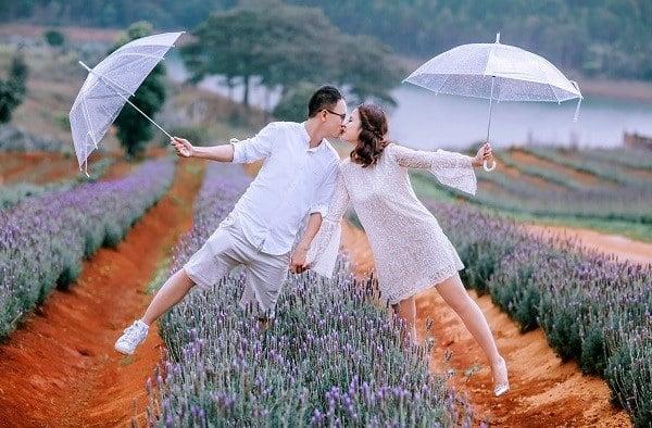 Cánh Đồng Hoa Lavender