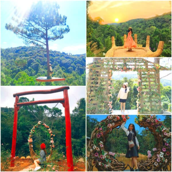 Hoa Son Dien Trang: An oasis in the heart of Dalat