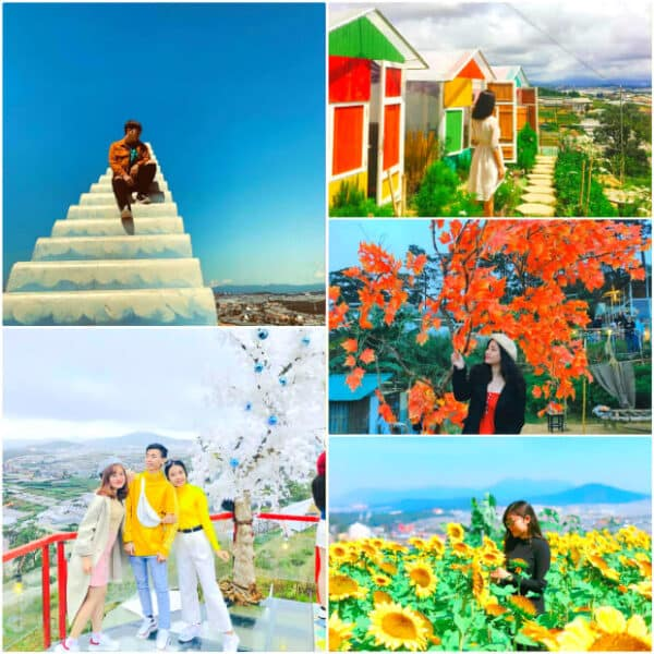 Sunny Farm: The virtual paradise of young people when traveling to Da Lat