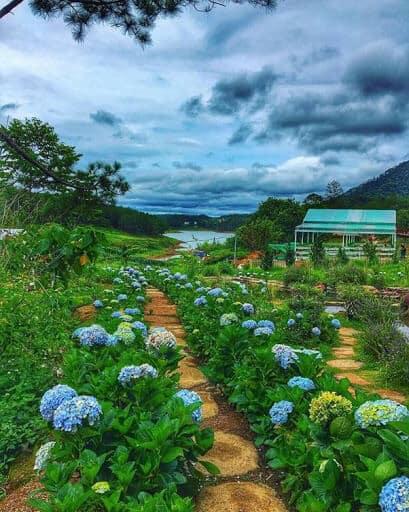 Những đường hoa xanh ngát hương tại Đường Hầm Đất Sét