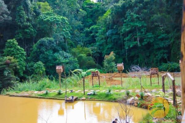Vượt qua những con đường đèo, bạn sẽ thấy Hoa Sơn Điền Trang