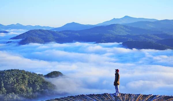 Thảm gỗ săn mây Đà Lạt