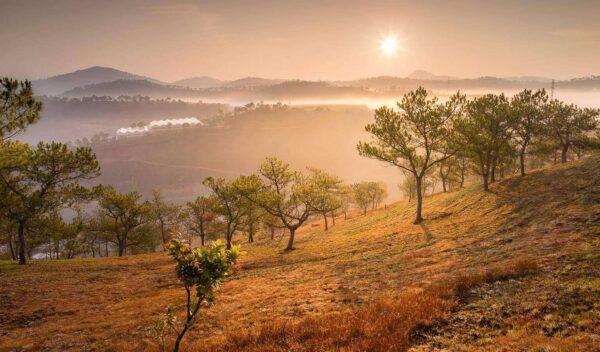 Nét hoang sơ còn nguyên vẹn của đồi Thiên Phúc Đức