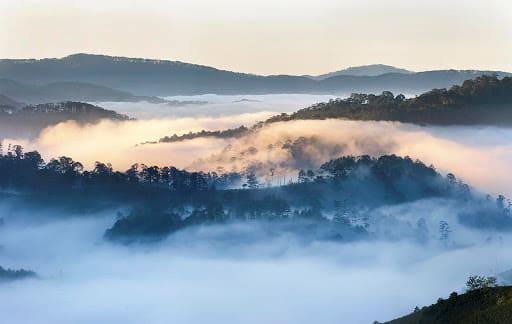 Mây giăng kín mỗi sáng ở đồi Thiên Phúc Đức