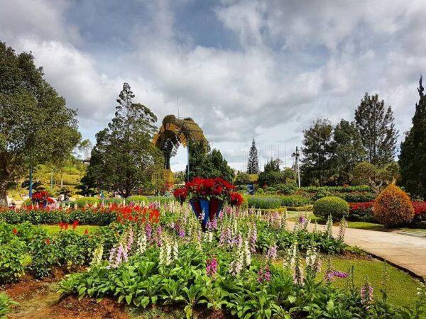 Muôn vàn loài hoa khoe sắc tại vườn hoa thành phố