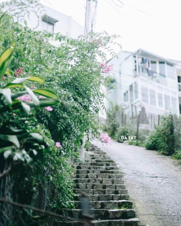 Khám phá lịch sử về Đà Lạt: Tìm lại miền đất ngập tràn sắc hoa nơi phố núi - Ảnh 10