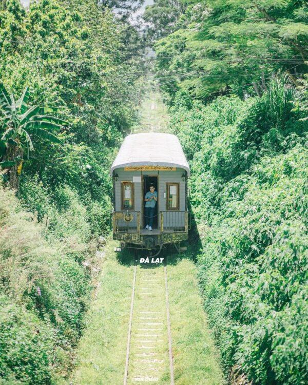 Khám phá lịch sử về Đà Lạt: Tìm lại miền đất ngập tràn sắc hoa nơi phố núi - Ảnh 5