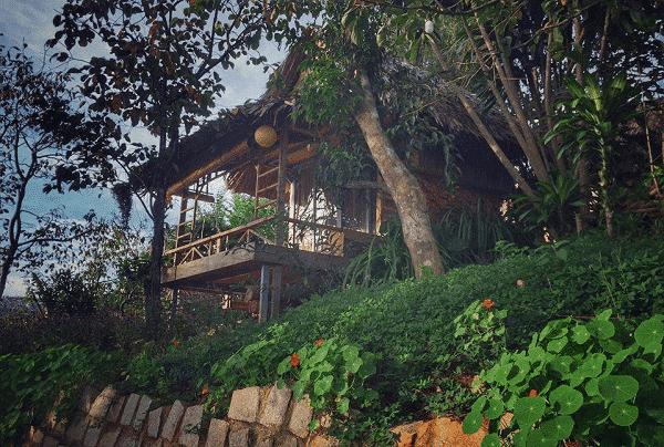 Củi homestay gần Hồ Tuyền Lâm