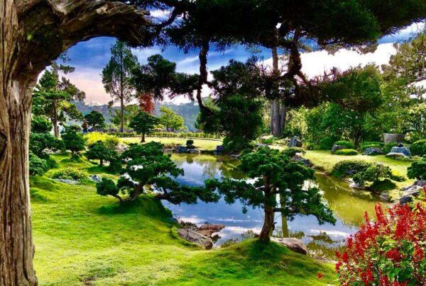 Thiên nhiên biến đổi tạo nên cảnh sắc tuyệt vời