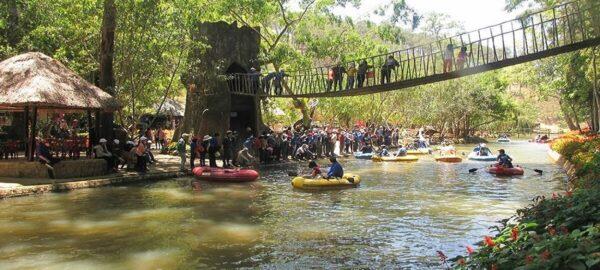 Những chiếc cầu gỗ bắt ngang qua suối