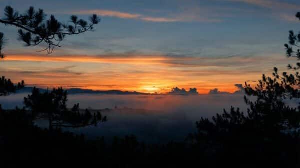 Nếu chịu khó dậy sớm, bạn sẽ được chiêm ngưỡng một Đà Lạt đẹp như mơ thế này đây