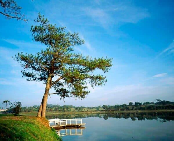 Bờ hồ Xuân Hương chưa bao giờ hết lãng mạn, trữ tình