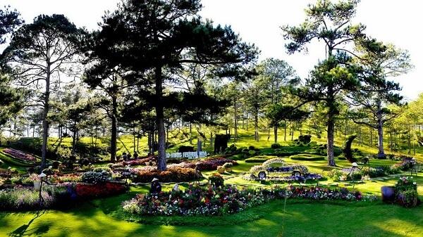 Không gian hoa Đà Lạt quy tụ rất nhiều loài hoa đẹp, thu hút đông đảo sự quan tâm, chú ý của khách du lịch gần xa