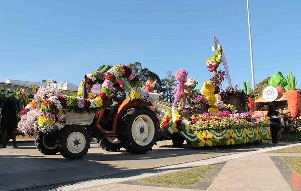 Đà Lạt đã trải qua 8 kỳ Festival Hoa lớn và năm 2021 chính là kỳ Festival Hoa lần thứ IX