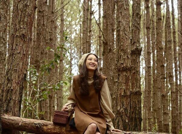 Checkin rừng Thông ở hồ Tuyền Lâm