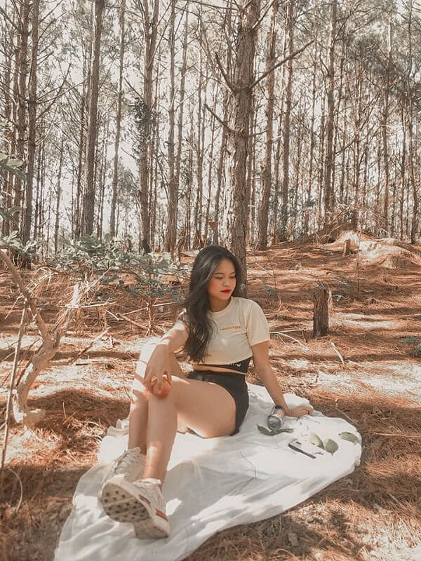 Check-in rừng thông đẹp ở Đà Lạt