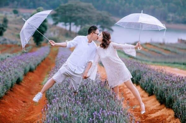 Vườn hoa Lavender hồ Tuyền Lâm Đà Lạt - Ảnh 2