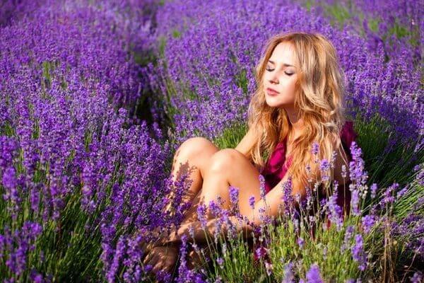 Khu du lịch cánh đồng hoa Lavender Đà Lạt