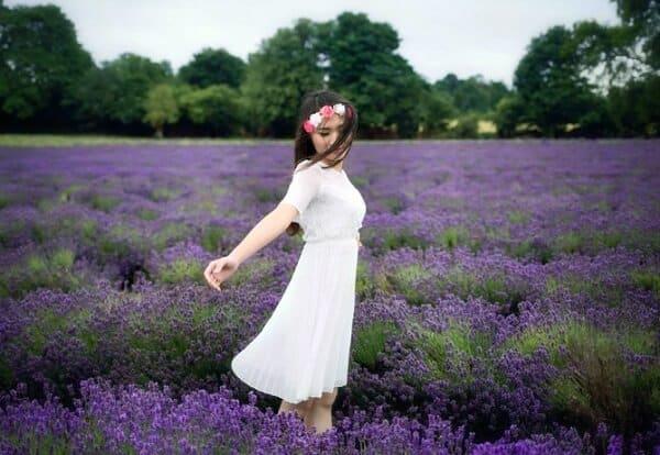 Cánh đồng hoa lavender Đà Lạt Cầu Đất