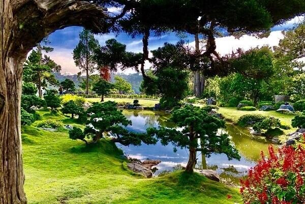 Khu du lịch Rừng Lá Phong