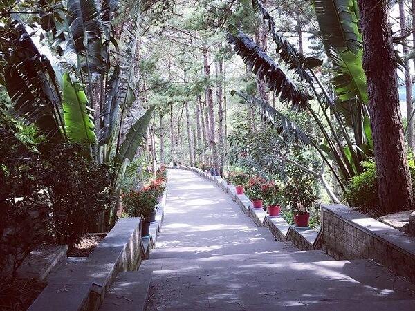 Bậc thang bằng đá đường lên chính điện từ hồ Tuyền Lâm